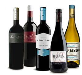 Botellas de nuestras marcas
